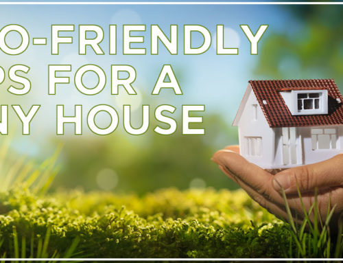 Eco-Friendly Tips For A Tiny House